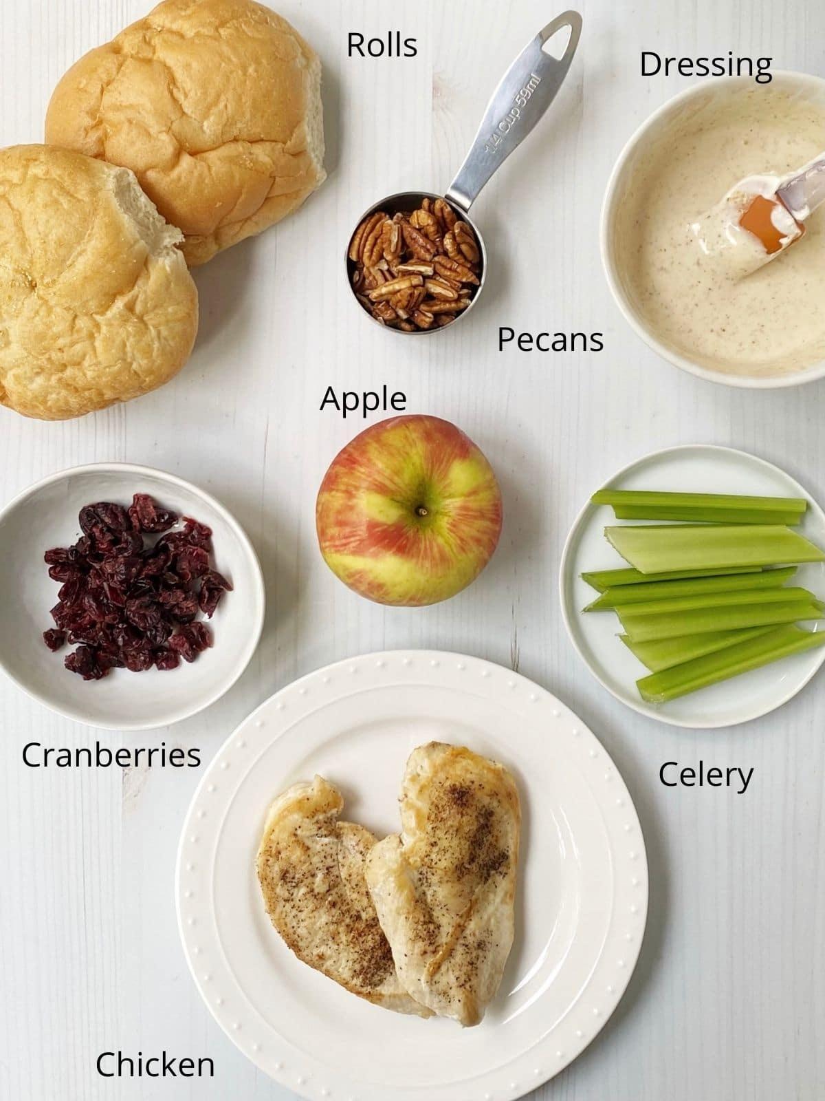 salad ingredients - chicken, pecans, apple, cranberries, celery, dressing and rolls