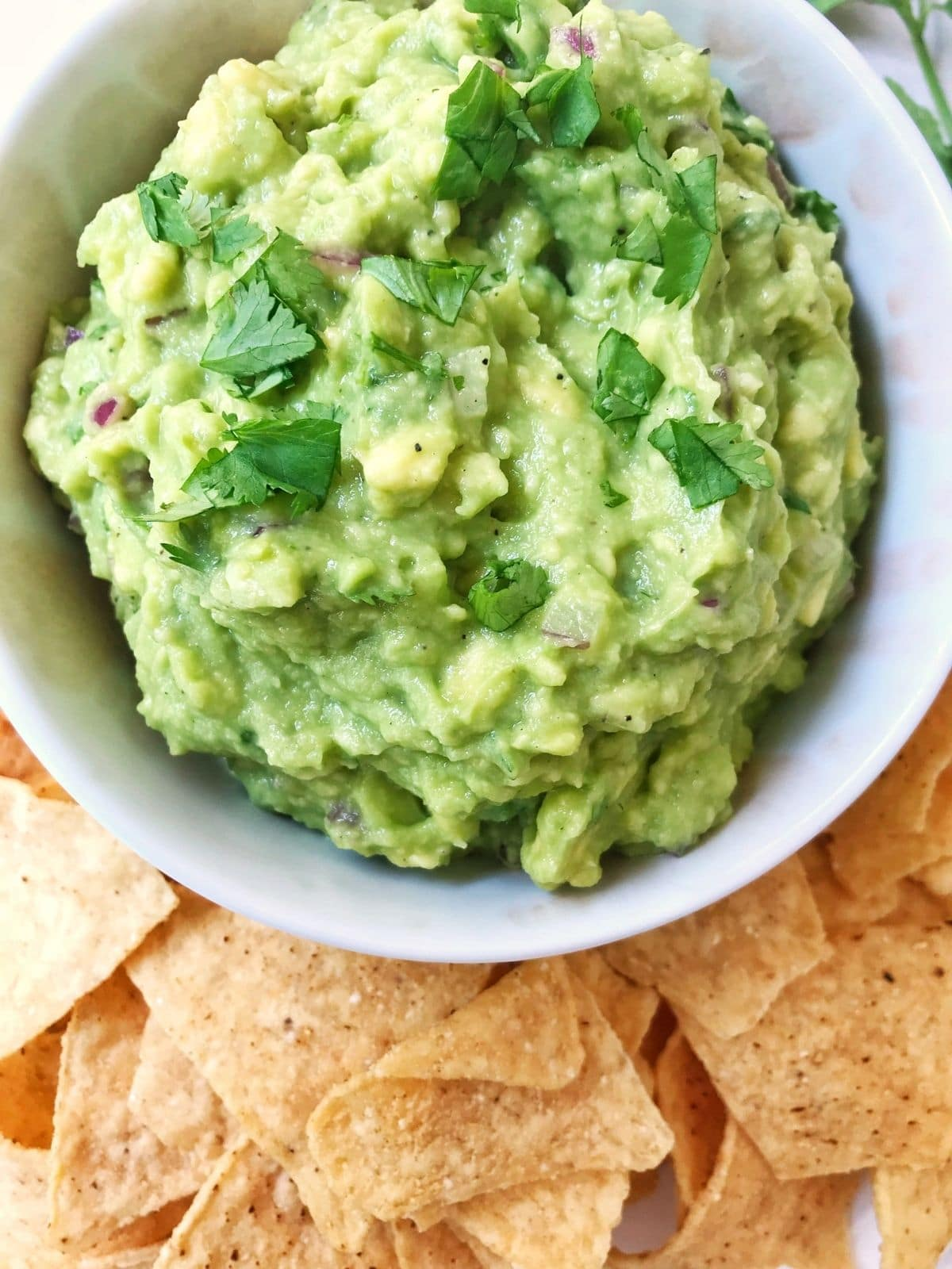 close up of bowl of avocado dip with tortilla chips on the side