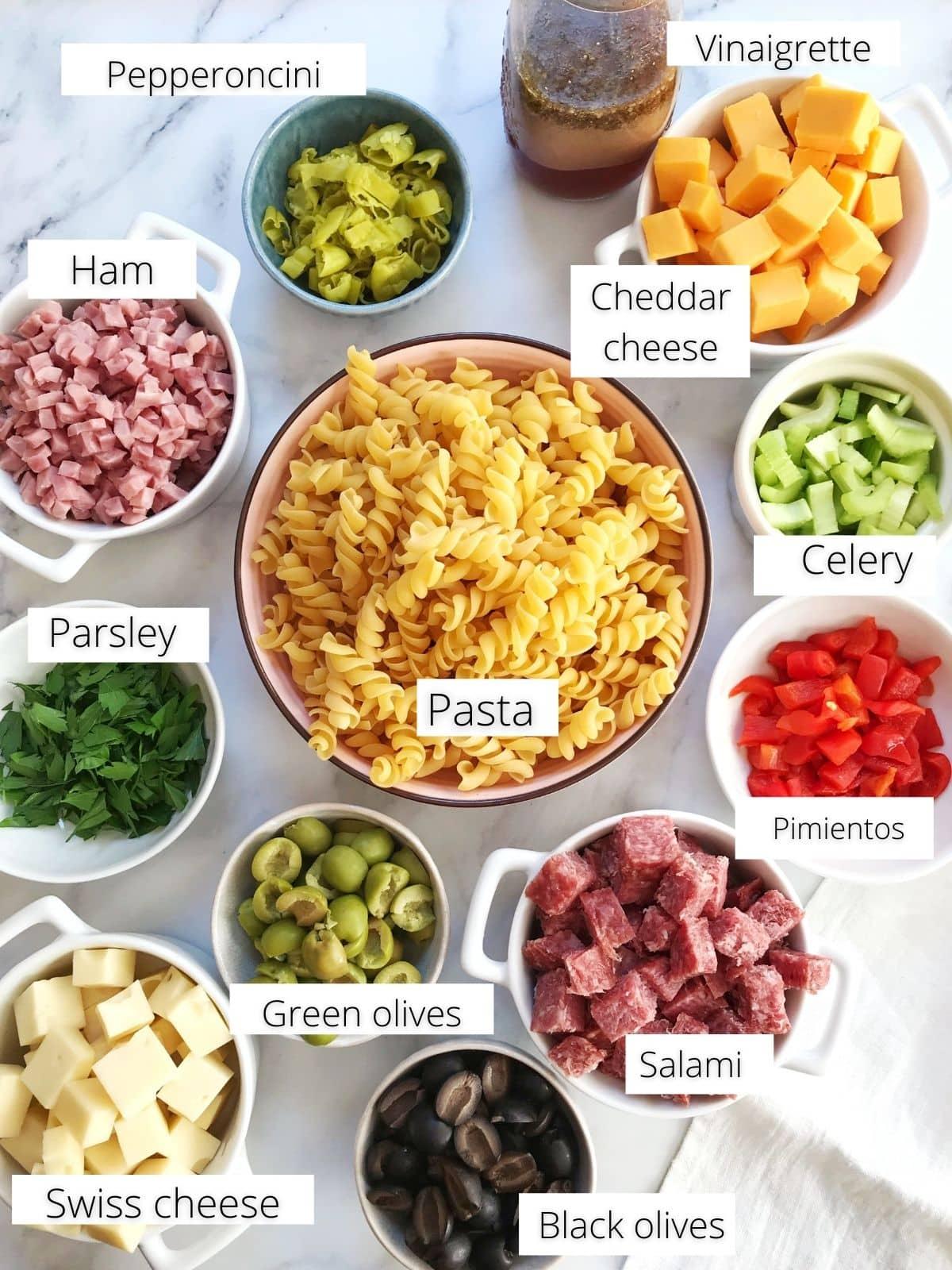 ingredients - pasta, meats, cheese, veggies, olives, seasonings, vinaigrette