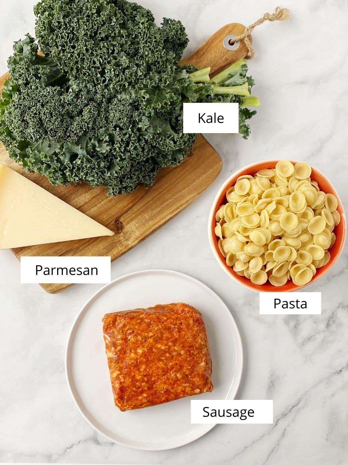 array of ingredients - kale, pasta, sausage, and parmesan