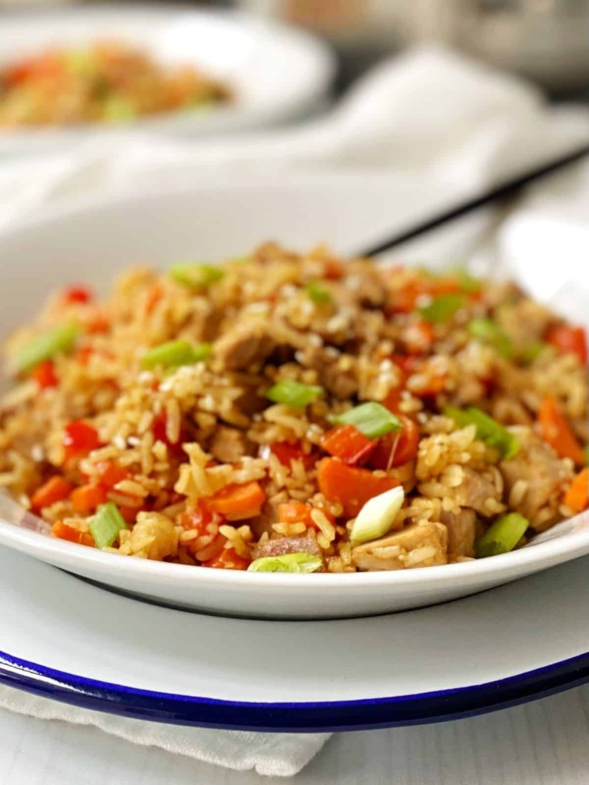 close up side view of bowl of pork fried rice