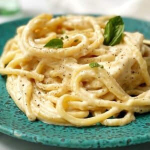 close up of pasta in alfredo sauce on a plate