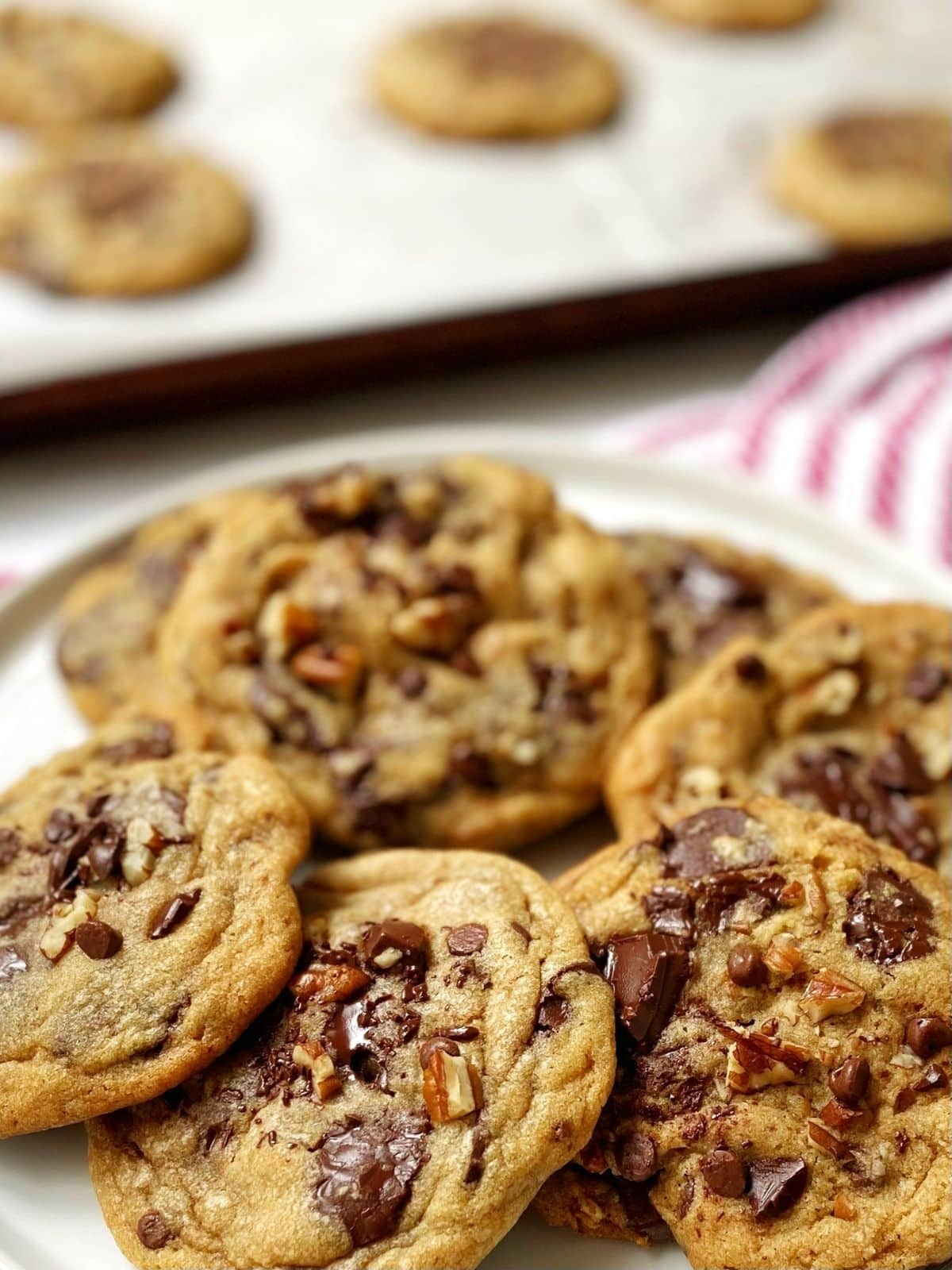 close up of dark chocolate chip pecan cookies on a plate.